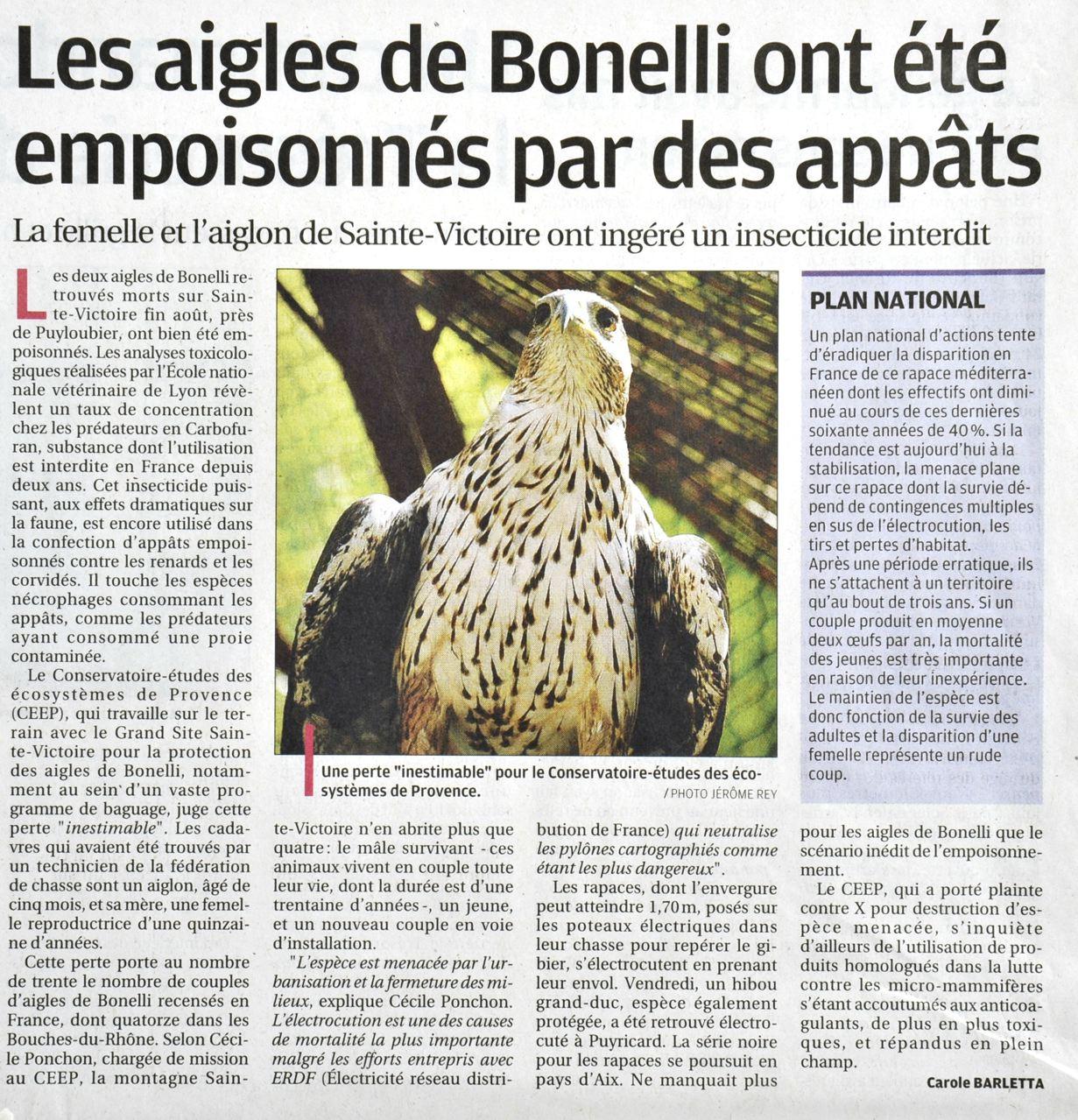 http://loicduperier.free.fr/parapente_blog/article%20aigles%20la%20Provence.jpg